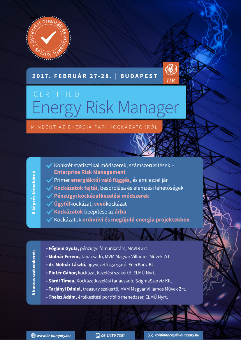 Energy Risk Manager